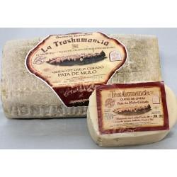 Queso Trashumancia curado artesano leche cruda de oveja